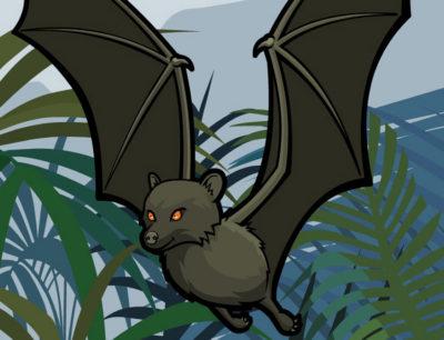 bbc newsround animal rescue bat featured