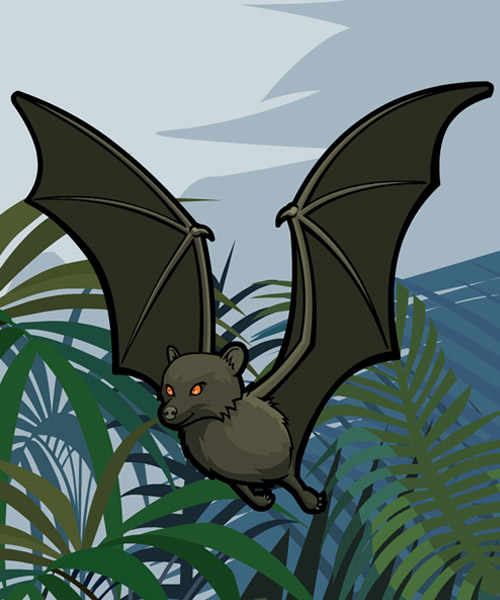 bbc newsround animal rescue bat graphic